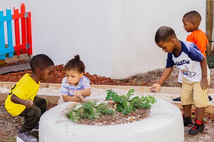 boys planting seeds